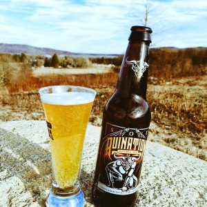 Stone Brewing Ruination IPA
