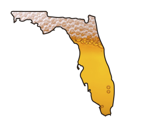 Florida Craft Beer