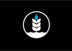 Pure Brewing
