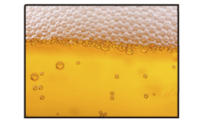 Wyoming Craft Beer